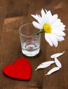 Daisy and Heart